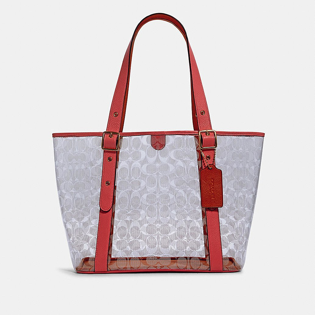 Small Ferry Tote in Signature Clear Canvas