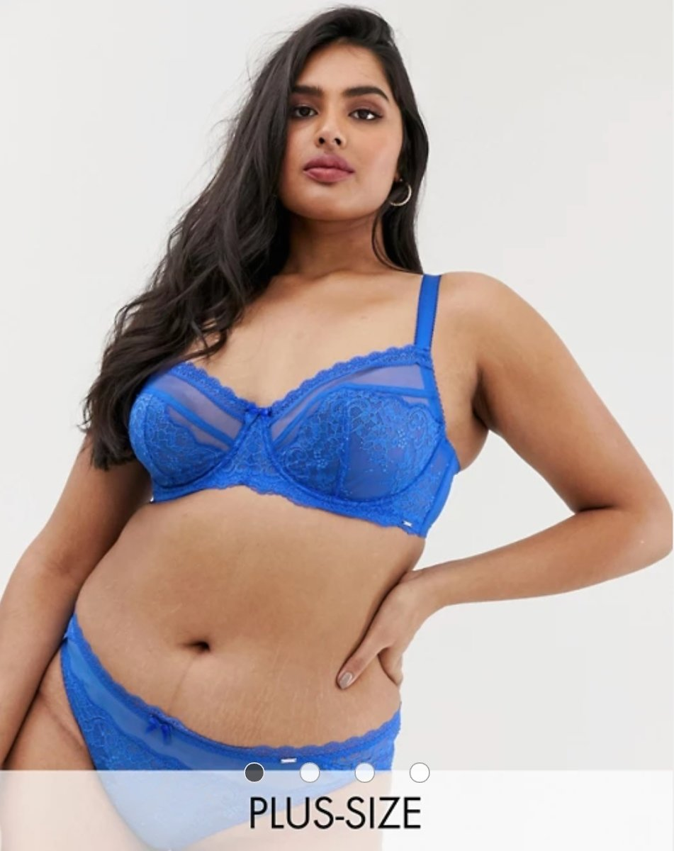 Dorina Plus Size Maureen Lace Mesh Briefs in Blue | ASOS