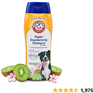 Arm & Hammer Super Deodorizing Shampoo for Dogs | Odor Eliminating Shampoo for Smelly Dogs & Puppies | Kiwi Blossom, 20 Ounces, White (FF10159)