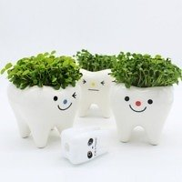 Source White Tooth Large Ceramic Plant Pots Chinese Ceramic Pots Flower Pots Bulk On M.alibaba.com