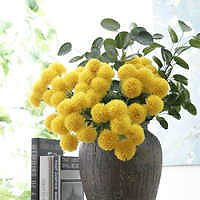 Source Shininglife Brand 6 Plastic Thorns Ball Flower Household Decoration Bouquet Ping Pong Chrysanthemum On M.alibaba.com