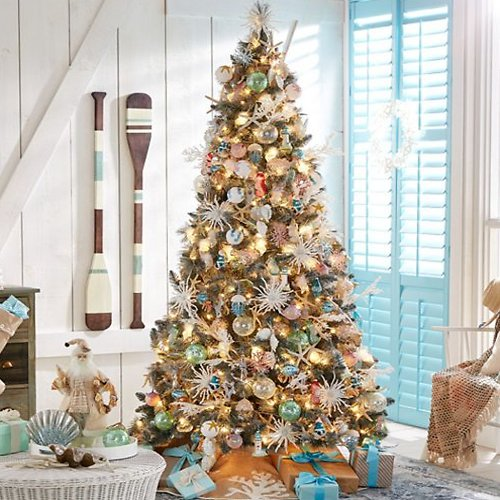 Up to 80% Off Christmas Trees
