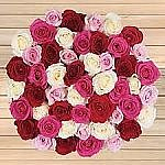 Costco Valentine's Day Floral Sale: 50 Roses for $55