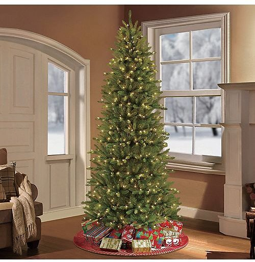 Puleo International 9 Ft. Pre-lit Slim Franklin Fir Artificial Christmas Tree 800 UL Listed Clear Lights & Reviews - Shop All Holiday - Home