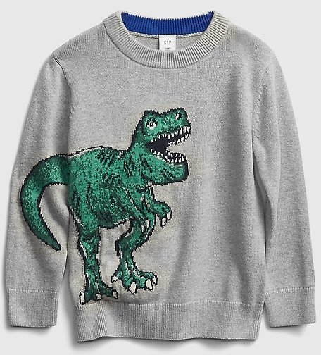 Toddler Graphic Sweater