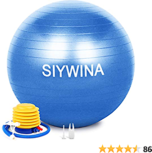 Exercise Ball with Quick Pump