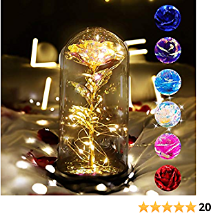 Artificial Flower Rose Gifts for Women,Galaxy Enchanted Rose Flower Gift in Glass Dome with String Light