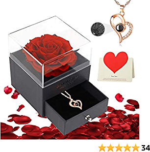 Eternal Rose Flower Gifts- Preserved Flower Rose 4 in 1 Gift Pack Handmade Fresh Flower Rose with 100 Languages I Love You Necklace Gift for Valentine's Day Mother's Day Anniversary Birthday(Red)