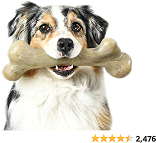 Pet Qwerks Extreme Dinosaur BarkBone Dog Chew Toy, Bacon Flavor, XXXLarge