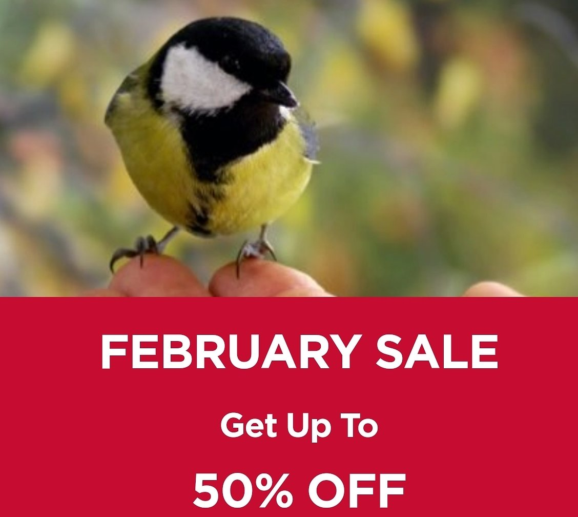 Up To 50% Off February Sale - True Value