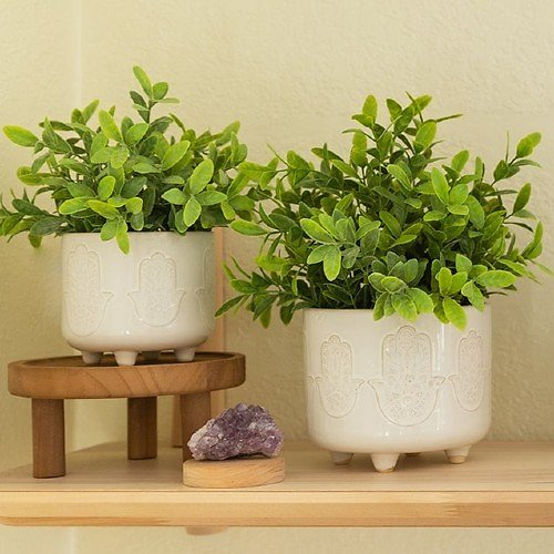 Up to 50% Off Green Thumb's Heaven Sale