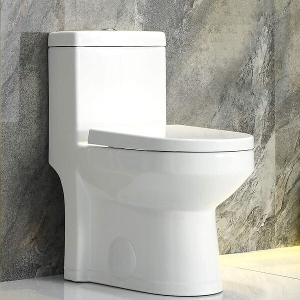 Dual-Flush Elongated One-Piece Toilet (Seat Included)