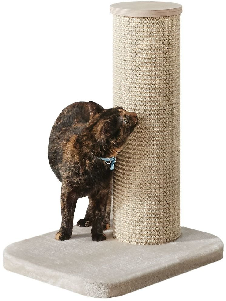Two By Two Maple 1 Level Beige Cat Tree, 18.5