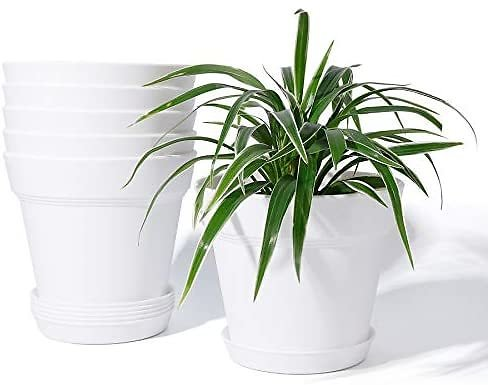 Set of 6 Indoor Plant Pots - POTEY 6 Inch Plastic Nursery Pot with Drainage Holes