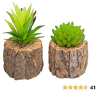 2 Pack Artificial Succulents Plants in Pots for Home Decor Indoor Aesthetic, Small Décor Faux Fake Plant for Desk and Shelf in Bathroom / Bedroom / Living Room
