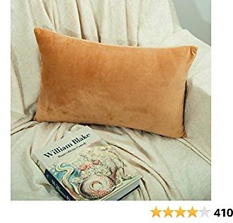 $6 Zippered Velvet Square Throw Pillow Covers, 2 Pack Super Soft and Luxury Decorative Lumbar Pillowcases, 12 X 20 Inches, Camel