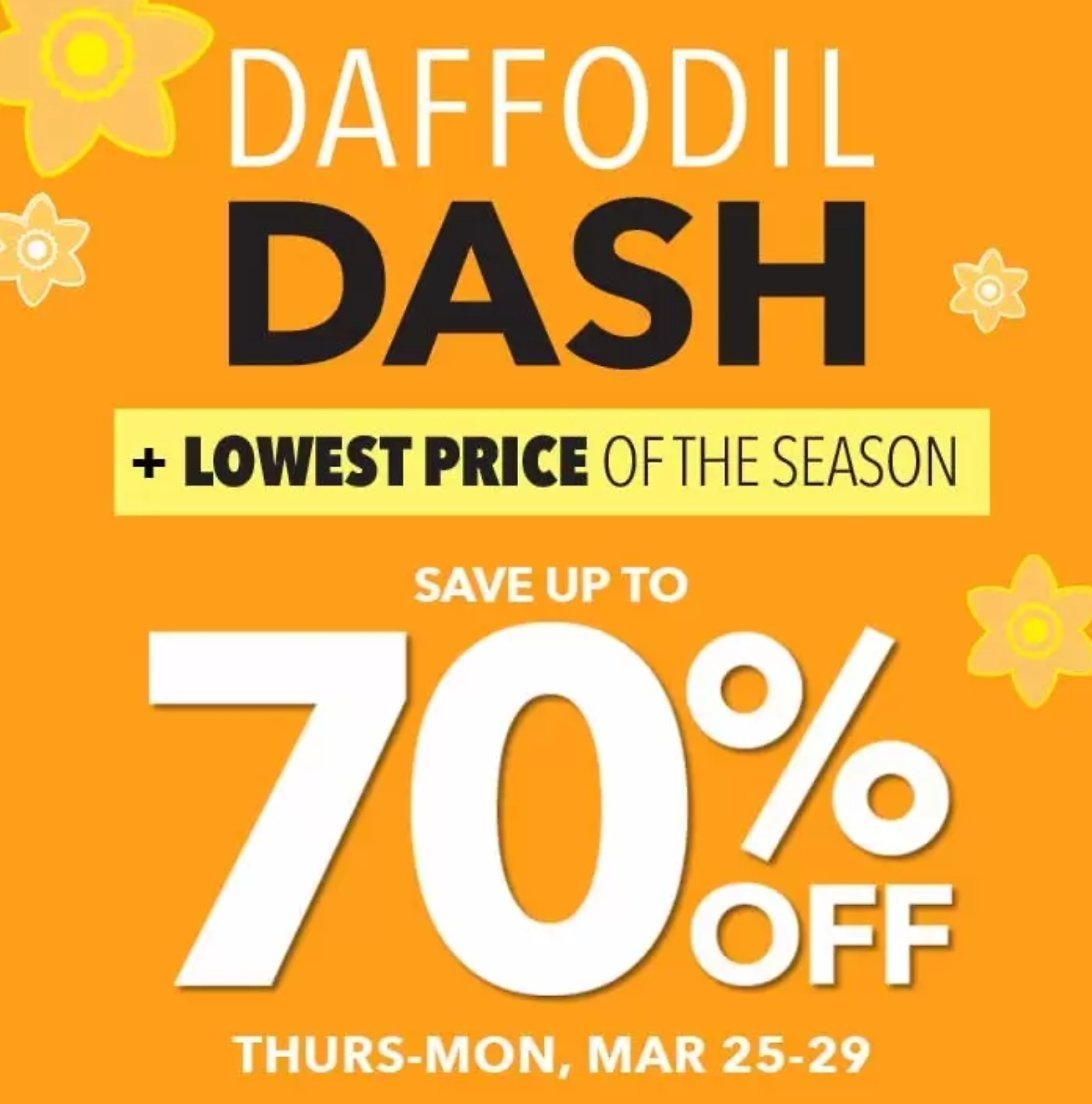 70% Off Easter Treats + Up to 50% Off Spring Dresses