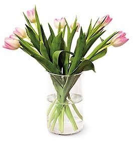 10-Stem Tulip Bouquet Assorted Colors (In-Store)