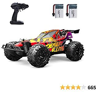 Holyton RC Cars, Remote Control Car 20 KM/H High Speed 2.4GHz 1:22 Scale Buggy, 60 Min Play 2 Rechargeable Batteries, All Terrain, Off Road Car Ready to Race 2WD, Toys for Boys, Birthday Gifts