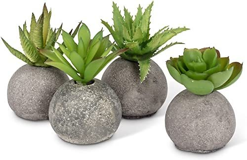 Set of 4, Abbott Collection 27-MOJAVE/10 Succulents in Rocks, Grey