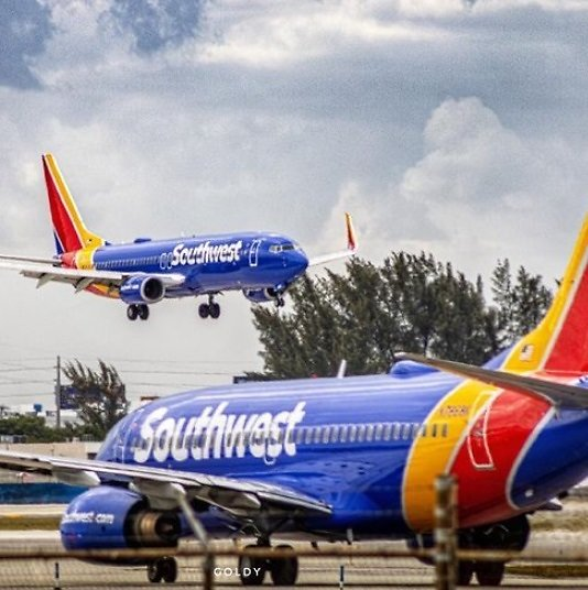 One-Way Fares from $50