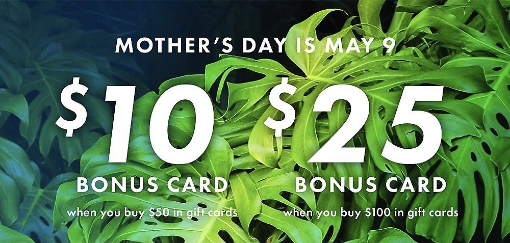 Free $25 Bonus Card When You Buy $100 in Gift Cards