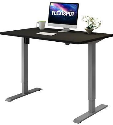 FLEXISPOT Home Office Electric Height Adjustable Desk Computer Table with 48