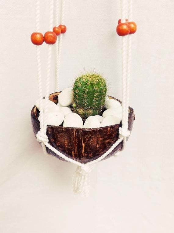 Macrame Hanger With Natural Coconut Shell Pot. (It Has Been Polished and Varnished)