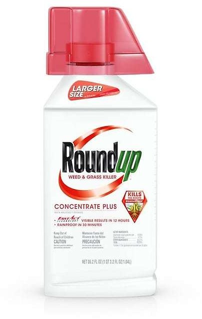 Roundup Concentrate Plus 35.2-oz Concentrated Weed and Grass Killer