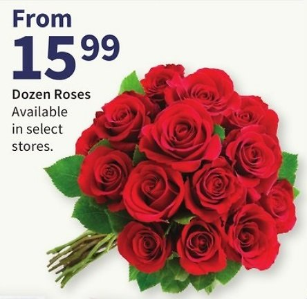 Dozen Roses from $15.99 (In-Store)