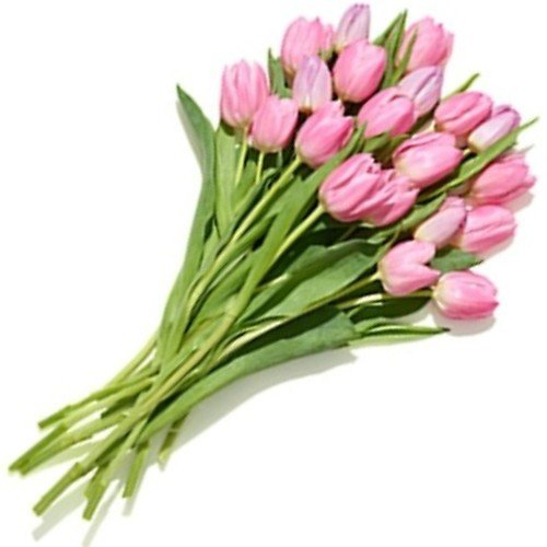 20-Stem Bunch of Tulips (In-Store)
