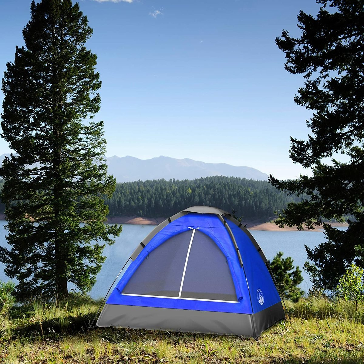 2-Person Dome Tent w/ Carry Bag