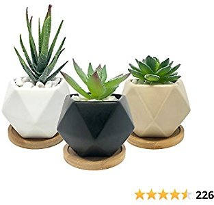 Bluegrid Succulent Pots 3 Inch Ceramic Mini Flower Pots Small Cactus Planter Modern Geometric Design Black White Beige with Bamboo Bases Pack of 3 (Plants Not Included)