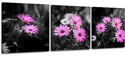 Black and White Wall Art Pink Flowers Canvas Prints for Bathroom Bedroom Kitchen