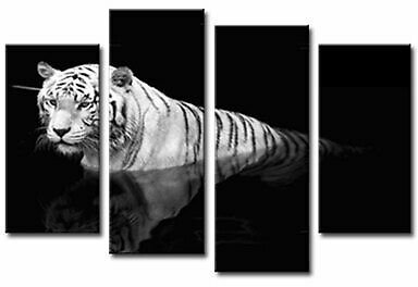 Black and White Tiger Picture Prints Wall Art for Living Room Decor Unframed