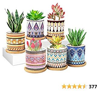50% Off—[2021 New Upgraded] Succulent Plant Pots 6 Pack