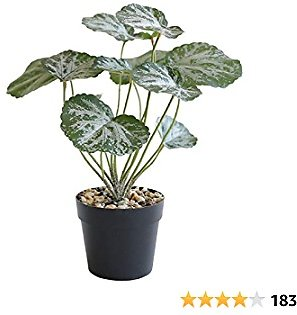 """Binnny Flower 11.5"""" Small Fake Plants, Faux Greenery Plants in Black Pot, Artificial Potted Plants for Home Office Desk Tabletop Bathroom Indoor Outdoor Decor"""