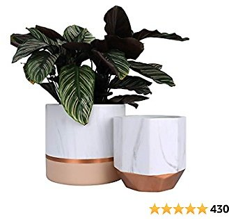 Ceramic Plant Pots with Rose Gold and Pink Detailing 50% OFF