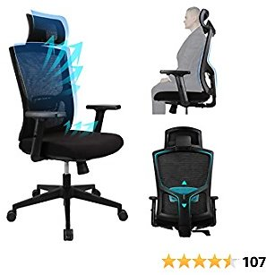 Ergousit Ergonomic Office Chair - High Back Desk Chair with Adjustable Lumbar Support &Thick Seat Cushion-Adjustable Head & Arm Rests-Seat Height-Computer Desk Chair, Task Executive Chair…