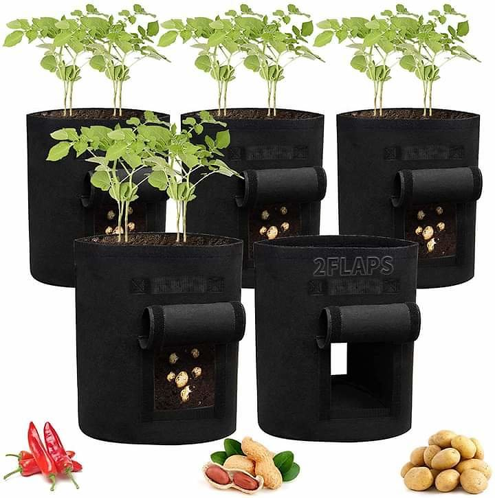 Potato Grow Bags 5 Pack from Amazon