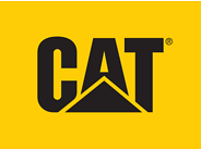 Cat Footwear Coupons
