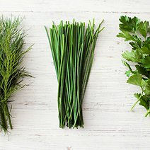 How to Get the Most Value Out of Fresh Herbs
