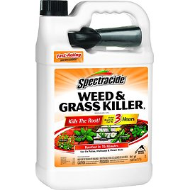 1-Gal Spectracide Weed & Grass Killer2 (Ready-to-Use)