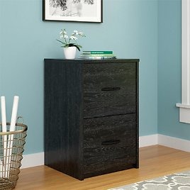 Price drop! Ameriwood Home Canal 2-Drawer File Cabinet (2 Colors)