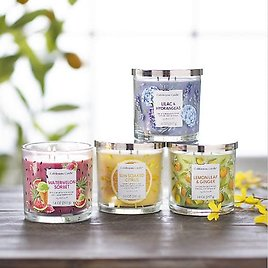 $7 Scented & Flameless Jar Candles (Multi. Scent)