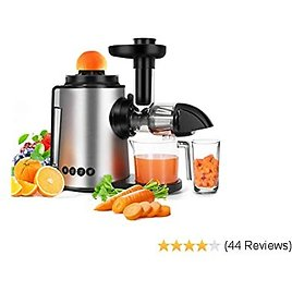 Juicer Slow Masticating Juicer Machine 2 in 1 Citrus Juicer Antioxidant Cold Press Juicer, Mute and Reverse Function Juice Extractor for Fruits and Vegetables with Juice Cup & Brush