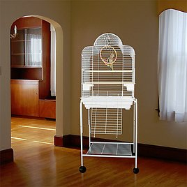 Bird Cages 4 Less