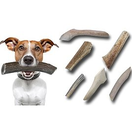 BuckeyBites Antler Chew Variety Pack with Assorted Sticks and Splits (1Lb. Package)