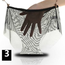 3 X Lady Mesh See Through Underwear Briefs Knickers Lingerie Shorts Pants Sheer