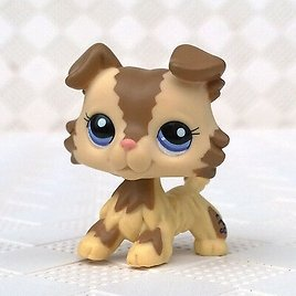 Pet Shop LPS Toys Collie Dog Puppy With Blue Eyes Cream Tan Brown #2210